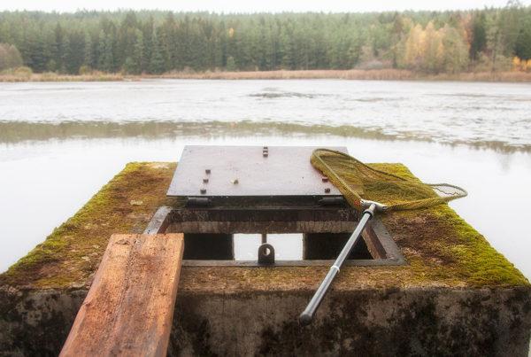 Der sogenannte Mönch dient zur Regulierung des Wasserstandes und zum Ablassen des Wassers an einem Weiher. Der Mönch am Kammerweiher ist ca. 2m hoch.
